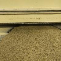 Nutri Mould Dry